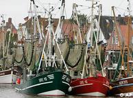 A veces los  pescadores del Mar del Norte encuentran más plástico que peces.