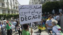 Algerien 17. Freitagsdemonstration in Algier (picture-alliance/abaca/L. Ammi)