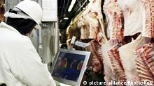 Symbolbild EU kommt USA im Streit um Rindfleischimporte entgegen