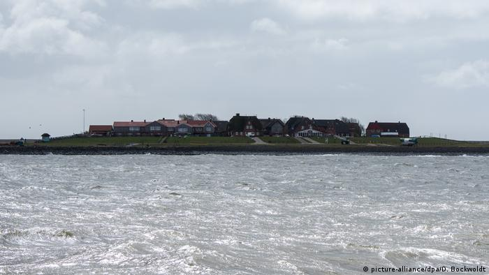 Hallig Hooge - small island with a tiny cluster of houses (picture-alliance/dpa/D. Bockwoldt)