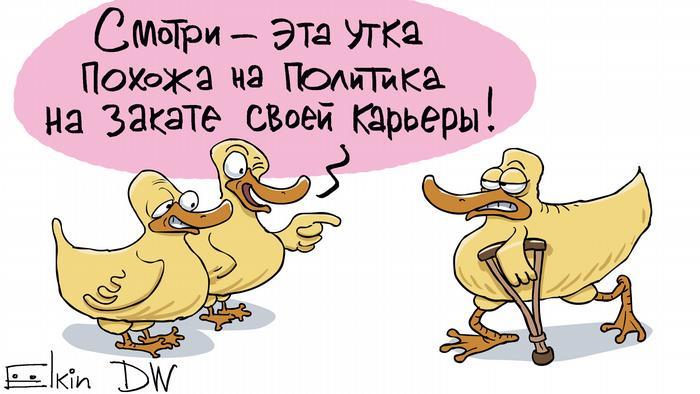 Две утки смотрят на третью - с костылем - и говорят, что она похожа на политика на закате карьеры