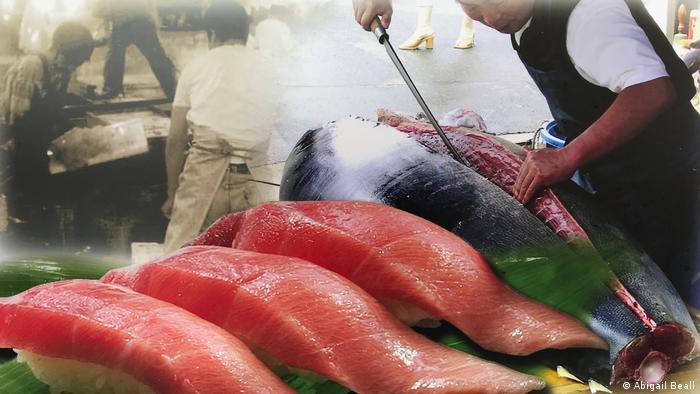 Japan Blauflossenthunfisch Fischerei