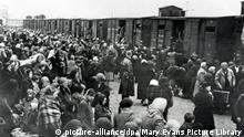 Konzentrationslager | Auschwitz Birkenau