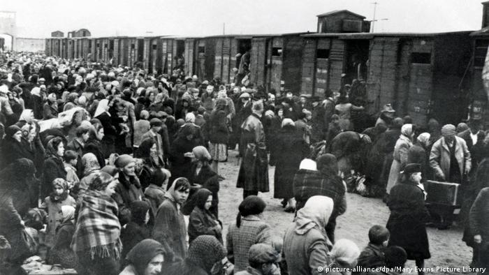 Konzentrationslager | Auschwitz Birkenau (picture-alliance/dpa/Mary Evans Picture Library)