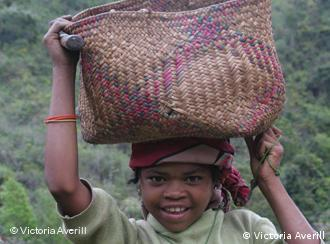 Rozanakutu's daughter helps farm her father's cultivated land which lies within the protected forest area in eastern Madagascar