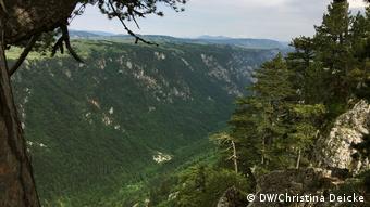 The Sušica Gorge in Montenegro