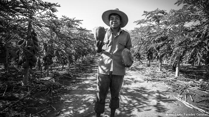 Luis es un joven campesino que tiene la inquietud de estudiar. Los jóvenes son necesarios en la comunidad cuya economía está basada en la agricultura. Produce toneladas de papaya, tamarindo, jamaica, ajonjolí, melón, tomates, maíz, cocos. Incluso en los años de violencia, las familias siguieron cultivando sus parcelas. Se sienten bendecidos por tener el río Ostula y tierras fértiles.