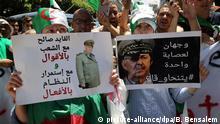 Algerien Anti-Regierungsdemonstrationen in Algier