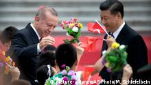 Peking Erdogan bei Xi Jinping (picture-alliance/AP Photo/M. Schiefelbein)
