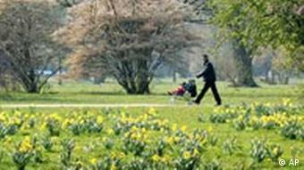 Spaziergänger mit blühenden Osterglocken