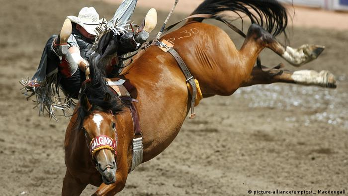 Calgary Stampede (picture-alliance/empics/L. Macdougall)