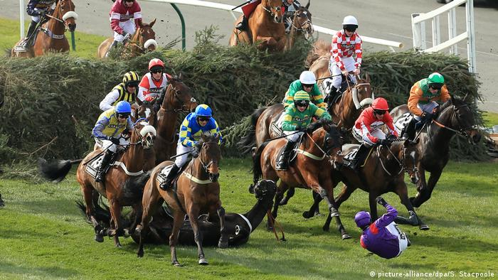 Aintree Races - Grand National Day (picture-alliance/dpa/S. Stacpoole)