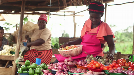 DW Eco Africa - Solar fridges in Nigeria helping farmers and sellers at the market