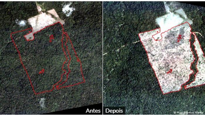 Acesso público a dados de desmatamento impossibilita manipulação, diz Inpe  | Novidades da ciência para melhorar a qualidade de vida | DW | 05.07.2019