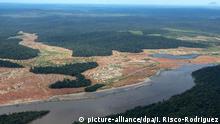Brasilien Entwaldete Waldflächen Amazonas-Regenwald