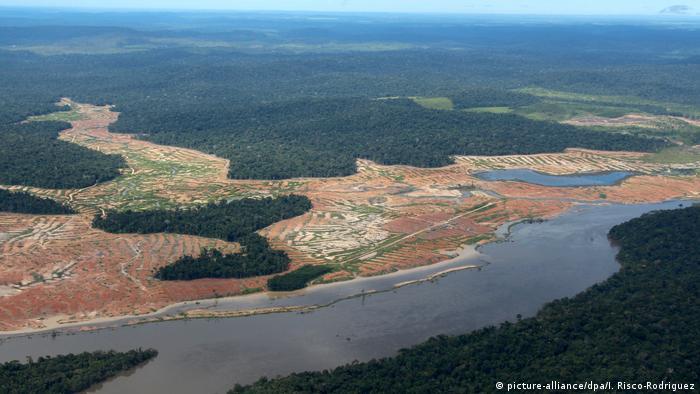 Brasilien Entwaldete Waldflächen Amazonas-Regenwald (picture-alliance/dpa/I. Risco-Rodriguez)