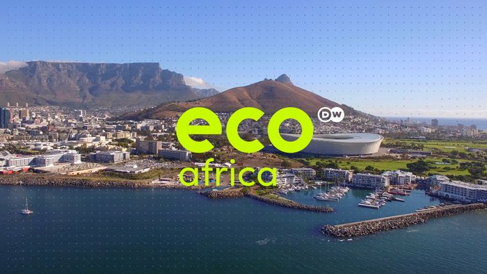 EcoCheck: Light pollution