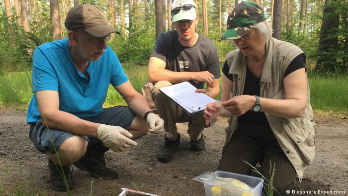 Participants inspect wolf traces as part of a tour (Biosphere Expeditions)