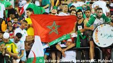Afrika-Cup 2019   Tansania - Algerien Fans
