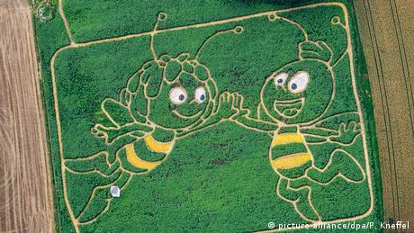 U nekoj zemlji, ko zna gdje… U stvari znamo gdje: Pčelica Maja i njen drug Pavo na jednom polju u Bavarskoj. Dvojica poljoprivrednika ovu sliku su napravili zasadivši suncokret, konoplju, kukuruz i ukrasne tikvice.