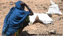Symbolbild | Klimawandel | Dürre | Kenia