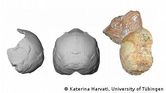 Homo Sapiens | Griechenland | Apidima (Katerina Harvati, University of Tübingen)