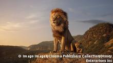 Still | Der König der Löwen - Neuverfilmung