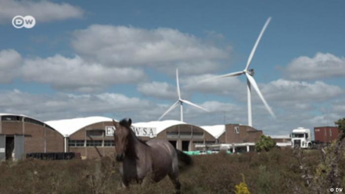 La energía eólica o la energía solar son un gran aporte para las reservas energéticas.