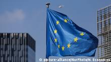 EU Flagge (picture-alliance/NurPhoto/N. Economou)