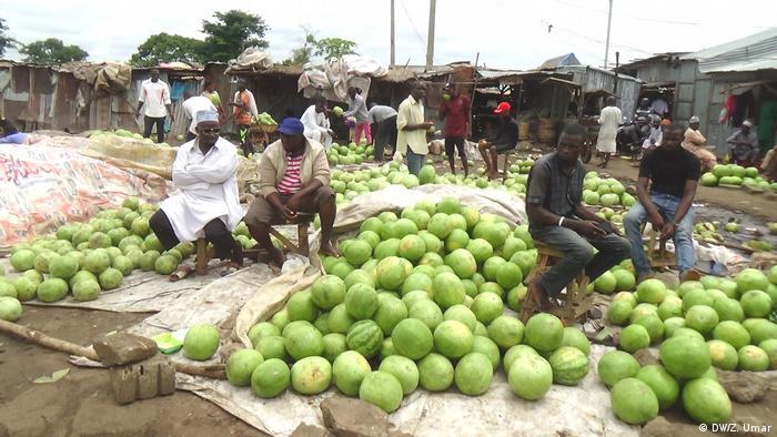 Kaduna Markt Melonen