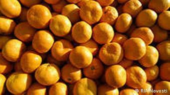 Obst Mandarinen