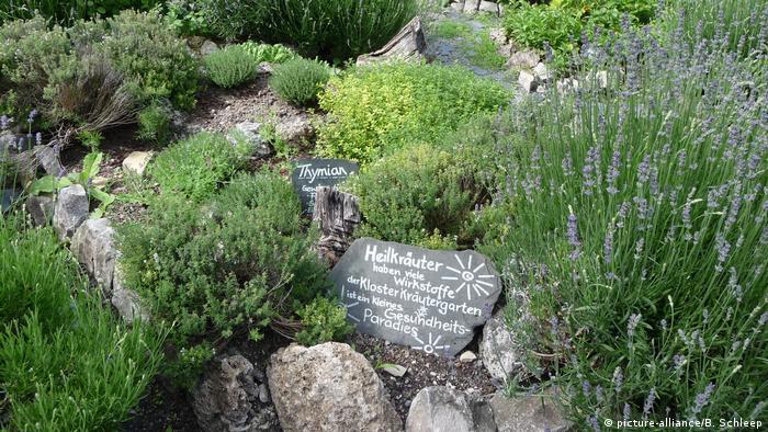 Монастырские сады Германии - Монастырь Оберцелль