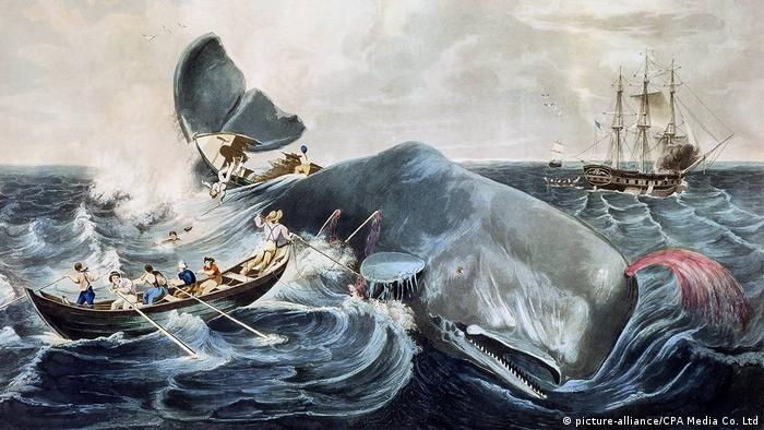 How Herman Melville′s ′Moby-Dick′ anticipated modernist writing | Books |  DW | 31.07.2019