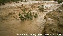 Flash flood in oued (river bed) in normally dry Algerian Sahara region, Algeria, North Africa, Africa   Verwendung weltweit, Keine Weitergabe an Wiederverkäufer.