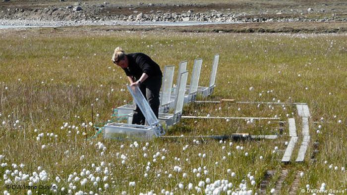 Eine Wissenschaftlerin in Grönland sammelt Informationen über den Methanaustoß von schmelzendem Permafrost. (Foto: DW/Irene Quaile)