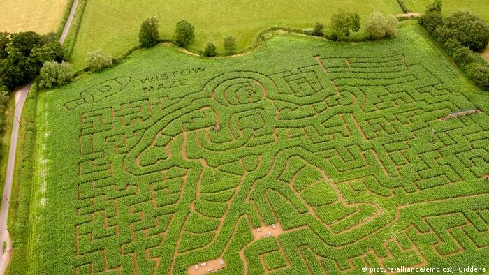 Wistow Maze in Wistow, Leicestershire (picture-alliance/empics/J. Giddens)