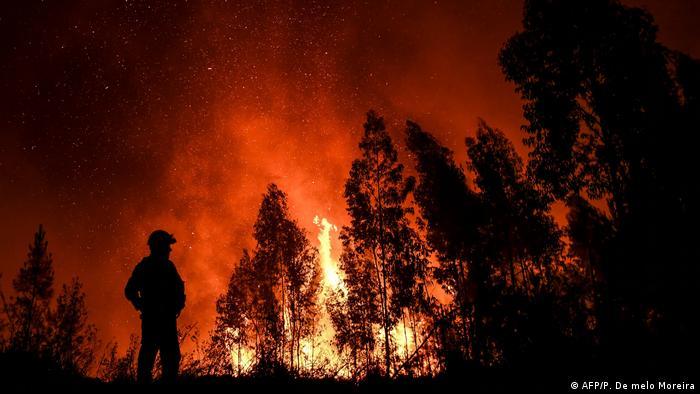 Portugal wildfire