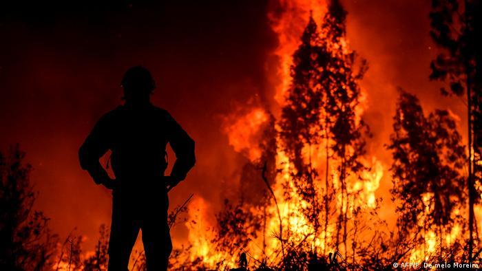 Waldbrände Portugal Karte.Schwere Waldbrände Mitten In Portugal Aktuell Europa Dw 21 07 2019