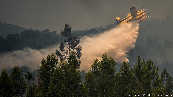 Літак рятувальних служб під час гасіння лісової пожежі у Португалії