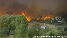 Portugal Waldbrände | Mindestens acht Verletzte