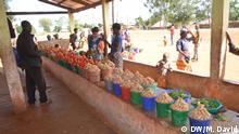 In der Provinz Niassa in Mosambik sind mehrere Bauarbeiten im Gange. Uti wird eine Sonderwirtschaftszone haben. Weitere Arbeitsplätze werden in der Region erwartet. 20.07.2019 Uti, Chimbunila, Niassa, Mosambik