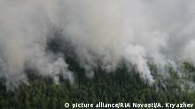 Russland l Waldbrände in Sibirien 2012
