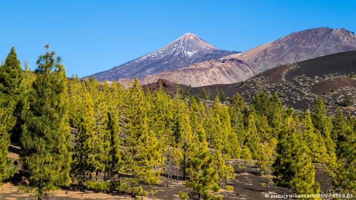 National park El Teide on the Canary Island of Tenerife (picture-alliance/HAFEN-FOTOS.DE)