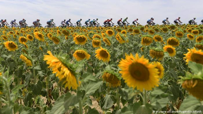 Tour de France 2019 11. Etappe Albi - Toulouse.