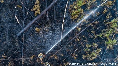 Massive fires in Russia's Siberia (picture-alliance/dpa/TASS/A. Ryumin)