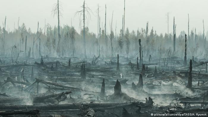 Vladimir Putin orders Russian military to fight giant Siberian wildfires