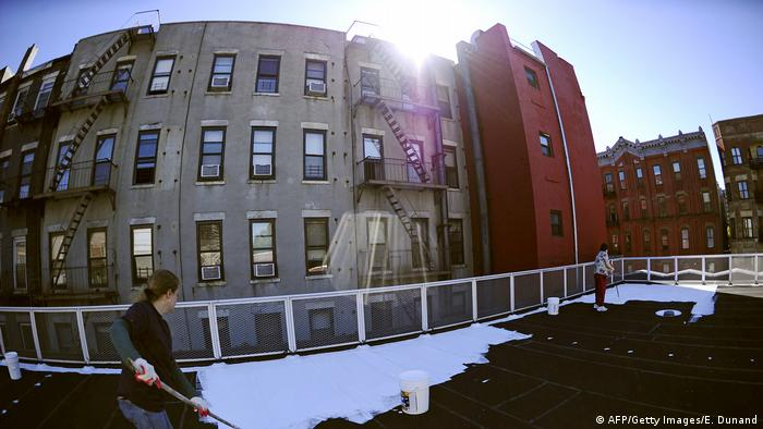 Volunteers in New York paint the roofs of schools with a special white paint that reflects 80% of sunlight