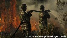 Indonesien Torffeuer in der Riau Provinz
