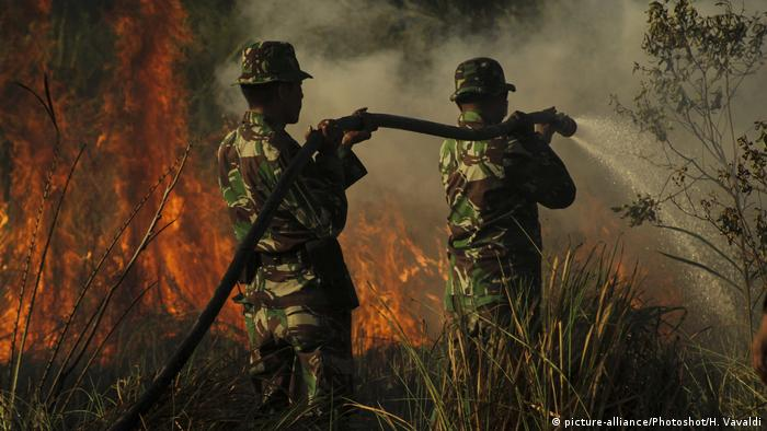 Indonesian soldiers try to extinguish peatland fire (picture-alliance/Photoshot/H. Vavaldi)