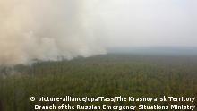 Russland Sibirien Wetter   Waldbrände Krasnojarsk
